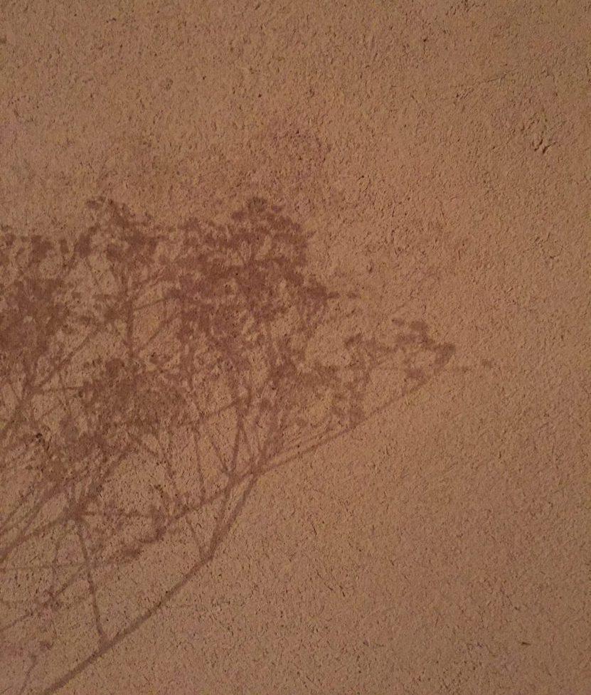 土壁と霞草